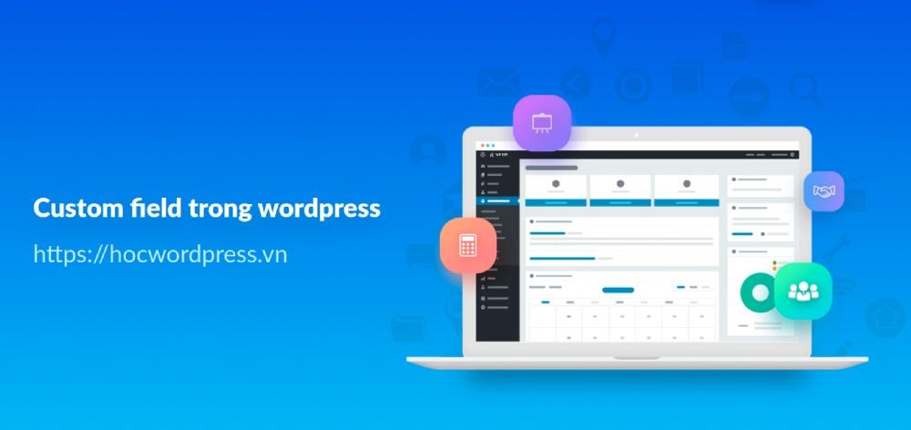 Custom field trong wordpress và các vấn đề liên quan